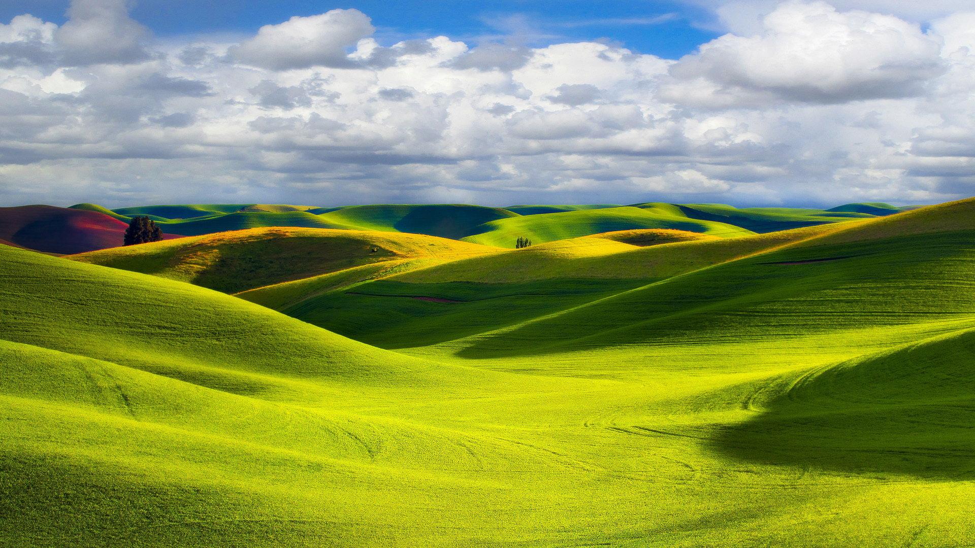 清新自然大草原好看的风景图片