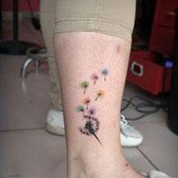唯美漂亮的彩色蒲公英小腿纹身图片