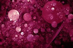 逼真立体酒红色泡泡唯美背景图片