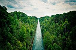 绿色大自然风光郊外唯美风景图片